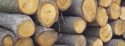 Объл дървен материал